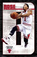 DERRICK ROSE Final Chicago Bulls NBA Basketball Official Wall POSTER (2014)