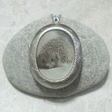 Hedgehog Locket Pendant Necklace Jewelry Stainless Steel