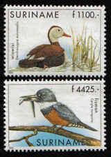 Surinam / Suriname 2000 IJsvogel kingfisher eisvogel marin-pecheur duck ente MNH