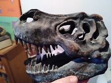 More details for 16cm t-rex tyrannosaurus rex skull dinosaur ornament nemesis now resin