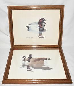 2 VTG Framed Duck Prints Canvasback & Canadian Geese Signed Richard Sloan c.1980