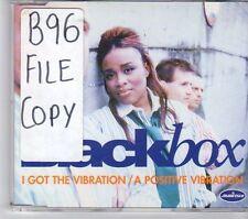 (EW379) BlackBox, I Got The Vibration / A Positive Vibration - 1996 CD