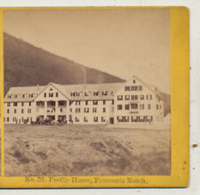 Profile House Hotel Horses Carriages Franconia Notch NH Kilburn Stereoview c1870