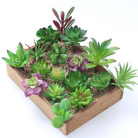 Artificial Succulents Plant Garden Miniature Fake Cactus DIY Home Floral Decors-