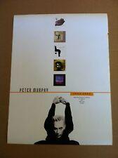 Bauhaus PETER MURPHY 2000 PROMO POSTER for Wild Birds CD 24x18 Never Displayed