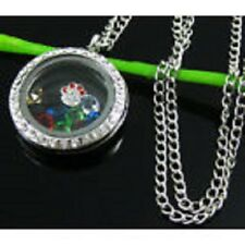 BEAUTIFUL CRYSTAL CAT DOG ANIMAL PAW MEMORY LOCKET PENDANT SILVER NECKLACE CHAIN