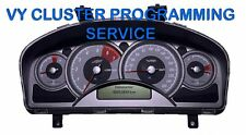 Holden Commodore VY Cluster Programming