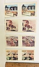 1960s 3D TRUE TO LIFE STEREO VIEWER CARDS CEREAL SANITARIUM ZOO BABIES LOT OF 4!