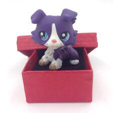 #1676 LPS In Box Littlest Pet Shop Toys Purple White Collie Dog Puppy Kids Gift