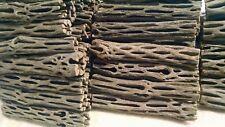 "100 Cholla Cactus Wood, 4"",ORGANIC,Untreated,Cholla Cactus,Chews,Crafts"