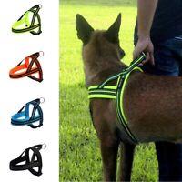 Dog Harness Adjustable Large Middle-Sized Pet Collar Walk Vest Without Leash