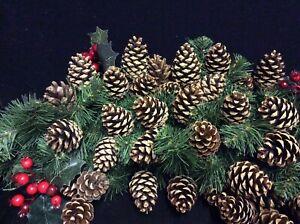 20 CHRISTMAS PINE CONES. WREATHS DECORATION GARLANDS CRAFTS. 3cm