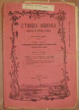L'UMBRIA AGRICOLA 15 30 OTTOBRE 1890 BACHI DA SETA PEGLI GENZANO VINO UMBRIA