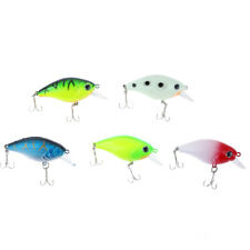 Fishing Bait Artificial Soft Lure Silicone Fish Shrimp Eye Fly Carp Tackle Box