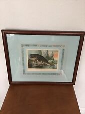 Beautifully Framed Sperm Whale Antique Lithograph Print Plate Xxix Cetacea 1880
