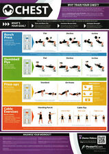 H617 Workout Stability Ball BodyBuilding Fitness Gym Chart Poster 21 24x36