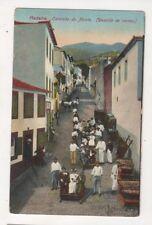 Madeira Caminho Do Monte Descida De Carros Portugal Vintage Postcard US058