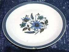 Lovely Myott Country Side ironstone ware dinner plate approx 10 ins wide