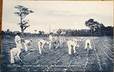 Cuba 1910 Postcard: Siembra de Tabaco- Tobacco Planting