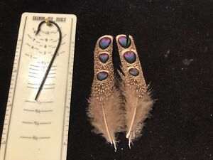 GREY PEACOCK PHEASANT FEATHERS  FLY TYING NATIVE AMERICAN CRAFTS