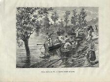 Stampa antica POLESINE di ROVIGO Inondazione del Po 1879 Old Antique print