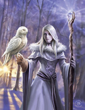 ANNE STOKES WINTER OWL - 3D CULT FANTASY PICTURE 300mm x 400mm