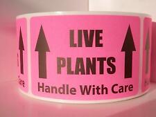 LIVE PLANTS Handle With Care Warning Stickers Labels fluorescent pink 250/rl