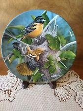 "Kevin Daniel, ""The Baltimore Oriole"" 1985, Encylopedia Britannica Birds Collecto"