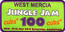 Boy Scout Badge 2016 CUBS 100 West Mercia at JUNGLE JAM