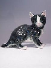 +# A003138 Goebel Archiv Muster Cortendorf Katze Cat schaut zur Seite 9966