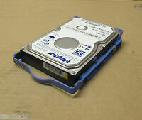 "Maxtor Diamond Max Plus 9 - 3.5"" 80GB 7.2K SATA Hard Drive HDD 71P7293, 71P7292"