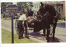 INTERCOURSE Cross Keys Amish HORSE & BUGGY Lancaster County PA Postcard