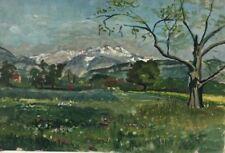 Hübsches altes Ölbild: Landschaft Alpen Voralpen Nachlass Hans Fäh