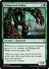 4 wildgrowth Walker