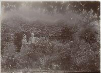 Coppia Nel Son Giardino Francia Vintage Citrato snapshot Ca 1900