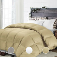 Ultra Soft Luxury Warm Fluffy Down Alternative Comforter Twin Queen King