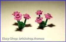 2 x Lego Blumen grün mit rosa Blätter - 33291 3741 - Dark Pink Flower - NEU/NEW