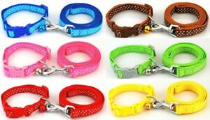 Dog Collar and Lead Leash Spotty Set Puppy Small Medium Nylon Terrier Pink Blue