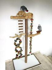 FREISITZ für Papageien, 165cm, mittlerer Größe aus ORIGINAL JAVA HOLZ, Hartholz