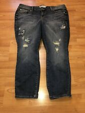 Torrid Jeans Embroidered Birds Distressed 16 NWT