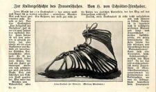 Chinesische Seidenschuhe u.a. zur Kulturgeschichte des Frauenschuhes von 1926
