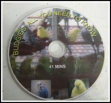 AUSTRALIAN BUDGIES IN AUSTRALIA  DVD FREEPOST AUSTRALIA ONLY