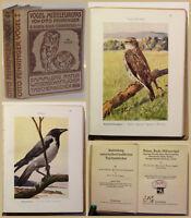 Fehringer Sammlung naturwissenschaftlicher Taschenbücher 1926 Biologie sf
