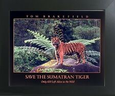 Smatran Tiger Roaring Wildlife Animal Wall Decor Art Print Framed Picture 20x24