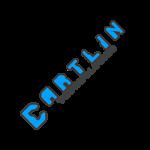 Cartlin Tech