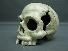 Cráneo de Calabera Tipografía 13cm Paperwight 1,35kg Hierro Fundido