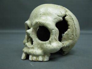 Totenkopf  Skull  Briefbeschwerer  13 cm Paperwight 1,35 Kg Gusseisen