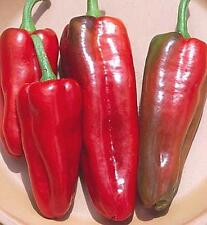 Pepper Seed - Sweet Marconi Italian Red Seeds