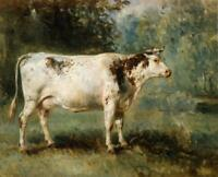 """stunning oil painting 100% handpainted on canvas """"cow"""""""