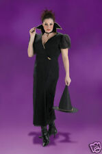 Transylvania Witch Plus Adult Costume - Up to Size 22